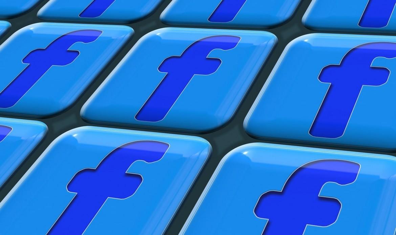 L'icone Facebook