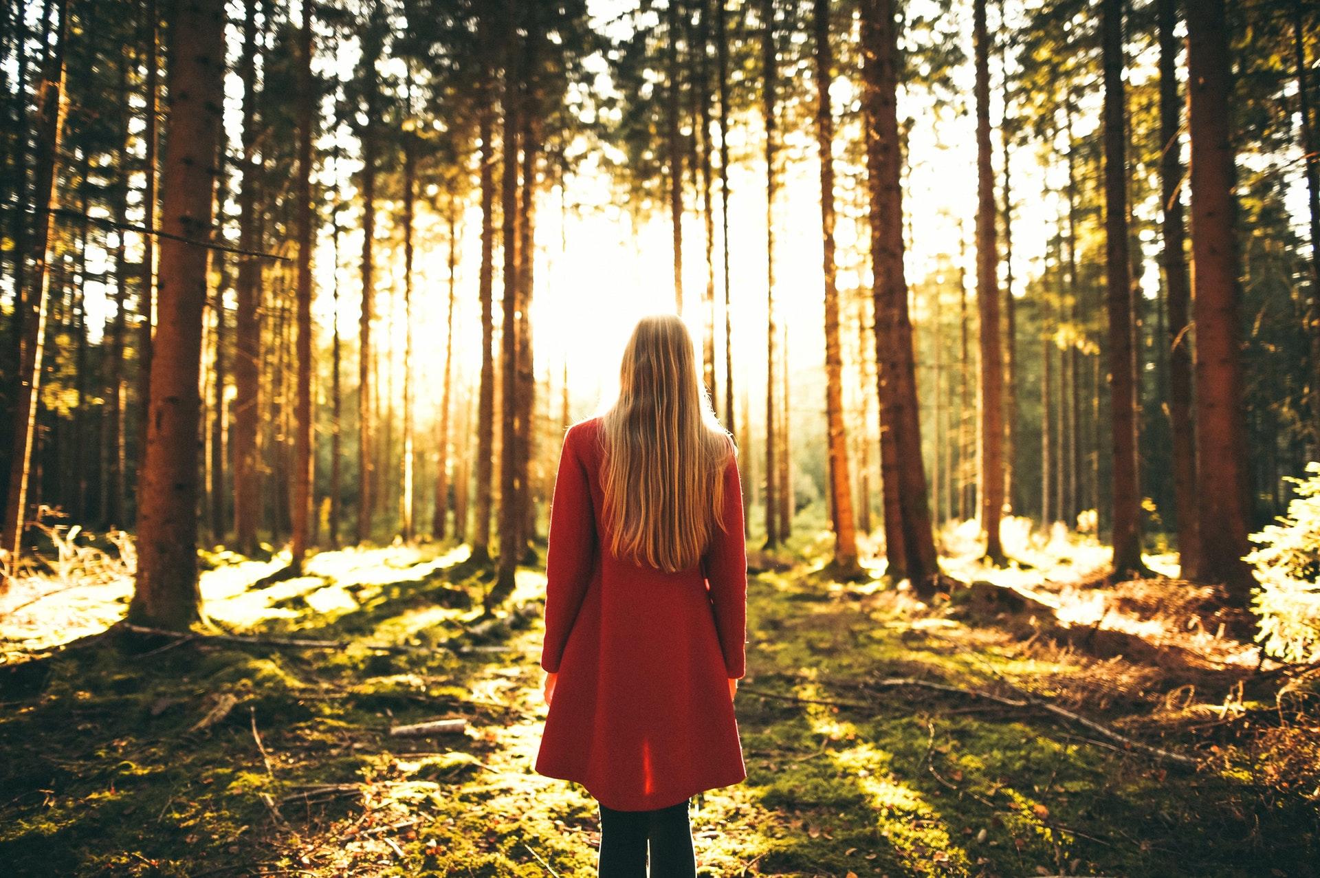 femme de dos dans la forêt